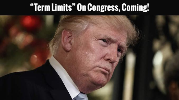 a look at congress and term limits We need to impose term limits so that whether or not they are re-elected is no   congressional elections are often looked over by the news and people alike.
